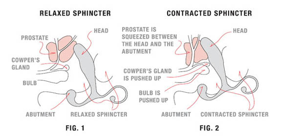 Pussy mixed husbands sperm